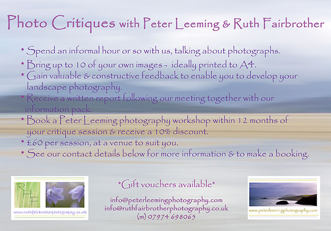 Photo Critiques Flyer 2014