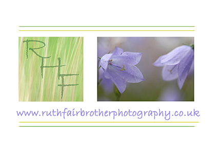 RHF Business Card Harebells FW