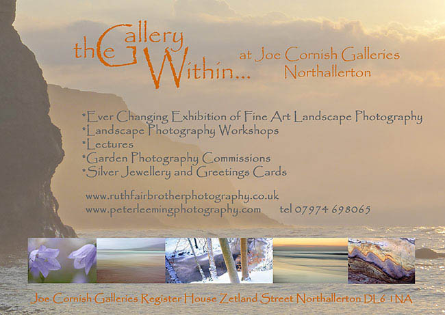 the gallery within flier